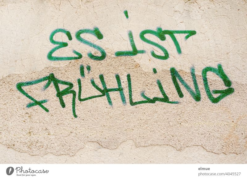 """""""IT IS SPRING"""" is written in block letters and green paint on the wall / graffito / spring feelings / youth culture. Spring Graffito Graffiti Wall (building)"""