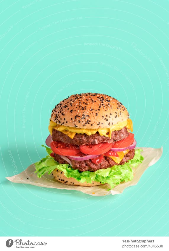 Homemade burger isolated on a green background. Beef patty burger. barbeque beef big bread bun cheddar cheese cheeseburger colored colors comfort food