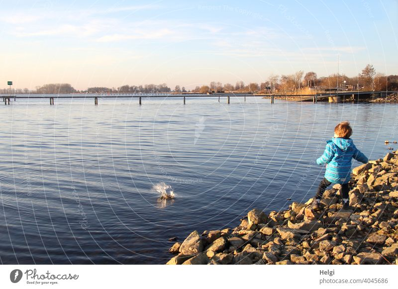 splash - back view of a little boy throwing a stone into the water at the shore of a lake Human being Child Boy (child) Toddler Infancy Joy fun Water Lake