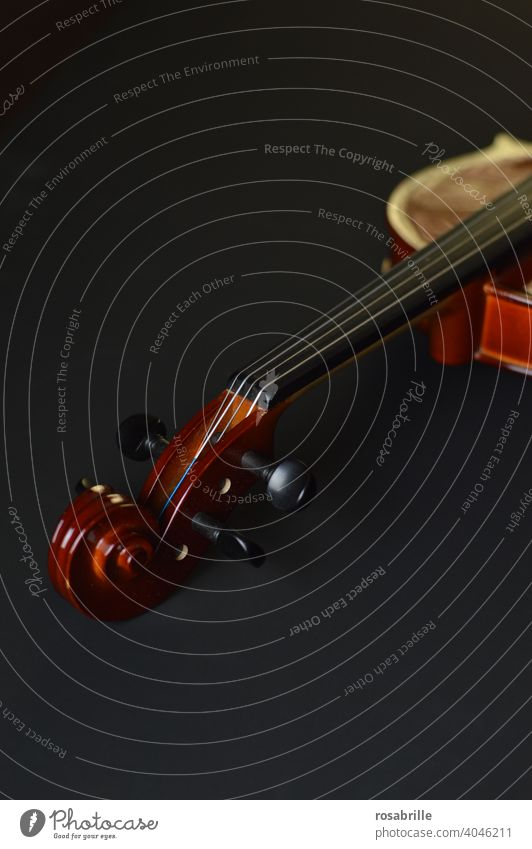 scroll Violin Crumpet Detail detail tool Musical instrument Make music Classic Classical Playing Ancient Old vertebra strings string instrument distinguished