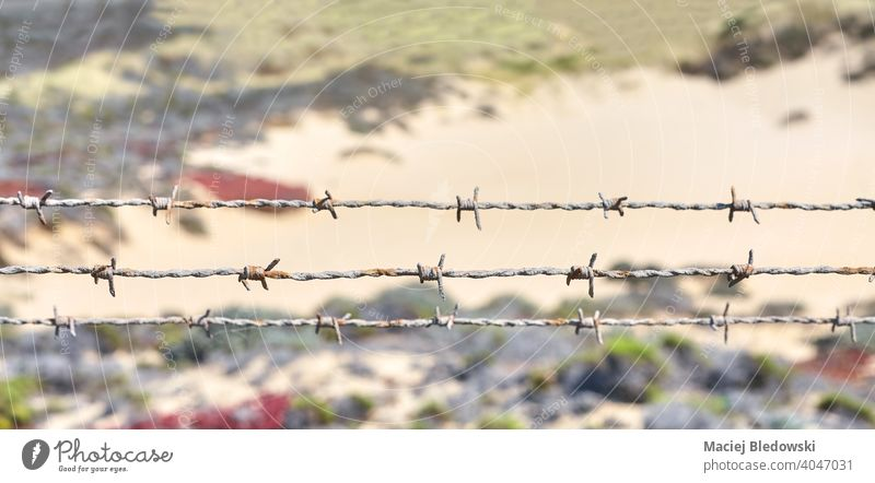 Close up picture of rusty barbed wire. fence barrier border land prison protection wilderness old outdoors security symbol rural frontier restriction safety