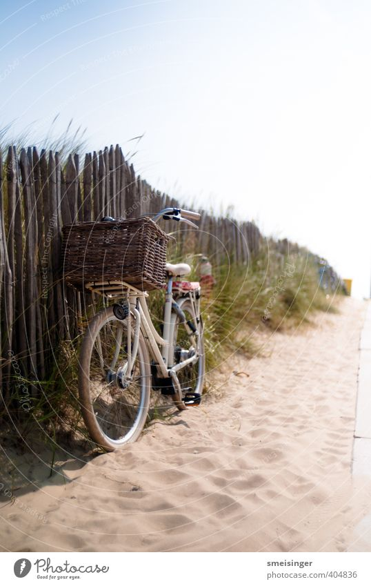 Fahrrad auf Strand Vacation & Travel Blue Green White Summer Relaxation Joy Beach Warmth Freedom Natural Bright Brown Leisure and hobbies Idyll Bicycle