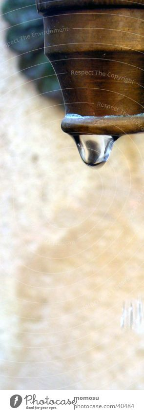 Drops of water Wet Living or residing Stagnating Tap