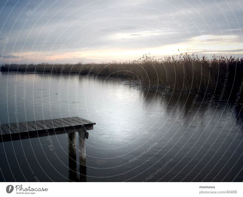 Lake Neusiedl Rust Morning Common Reed Water Footbridge Dawn
