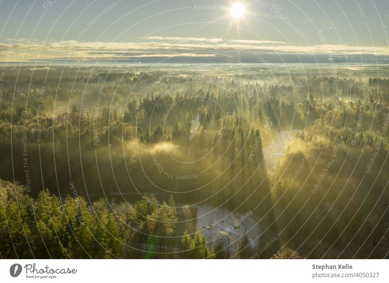 Wonderful foggy environmetal scenery - sunny aerial with the view over a wide forest, autumn moment in germany. crap nature Winter light landscape morning