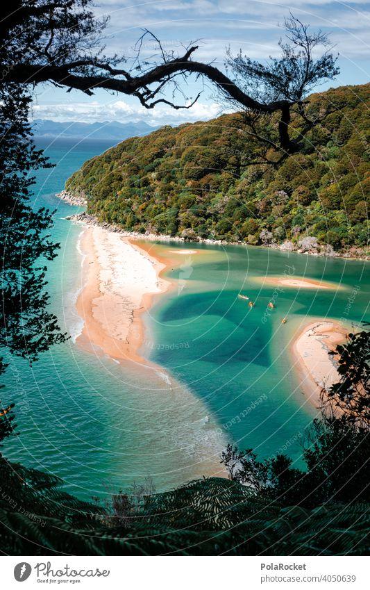 #AS# One Day In Paradise Ocean Sand Sandy beach kayaking Abel Tasman National Park New Zealand Blue Green Nature Landscape Exterior shot Summer Water Tourism