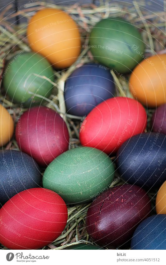 Colourful Easter eggs in the nest Easter Bunny Easter egg nest Easter Monday Easter wish Easter decoration Egg Eggshell variegated Painted Straw Nest Decoration