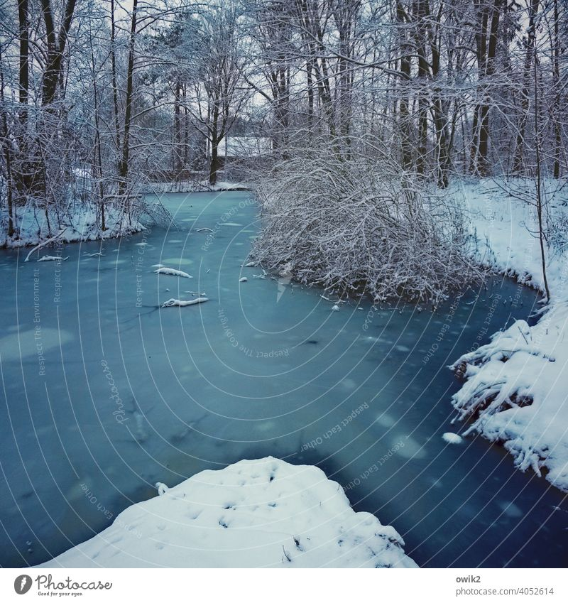 puddle Environment Nature Water Winter Ice Frost Snow Lake Freeze Cold Blue naturally Frozen Surface of water Exterior shot Deserted Colour photo Day