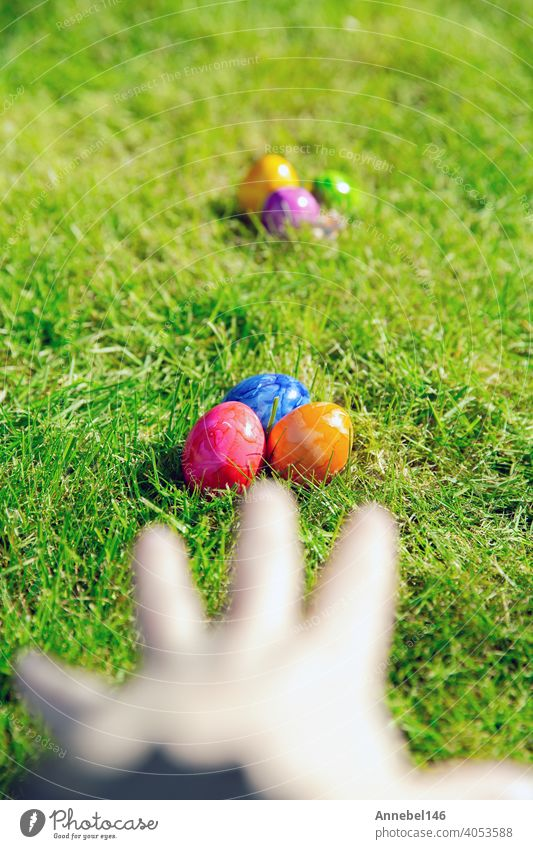 Easter eggs hidden in the grass, Colorful handmade painted Easter eggs hunt, Happy Easter Holiday concept in garden or park, easter spring holiday celebration