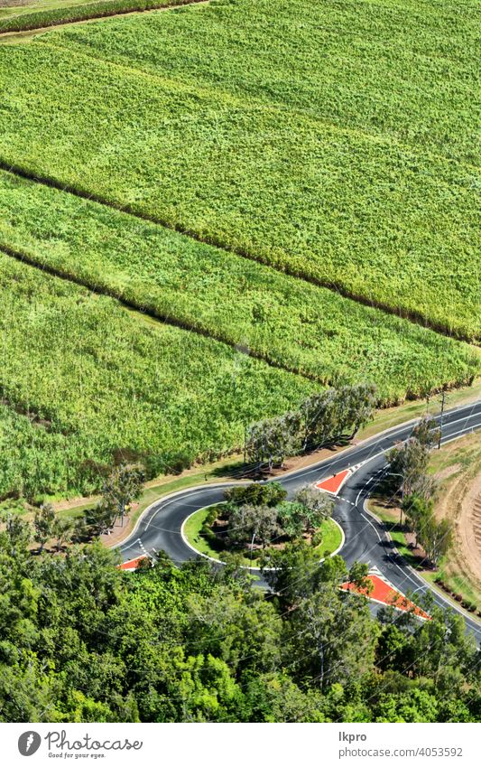 from the high field of colutivation view aerial angle top crop farm green agriculture nature corn above land landscape plant grass farming growth wheat