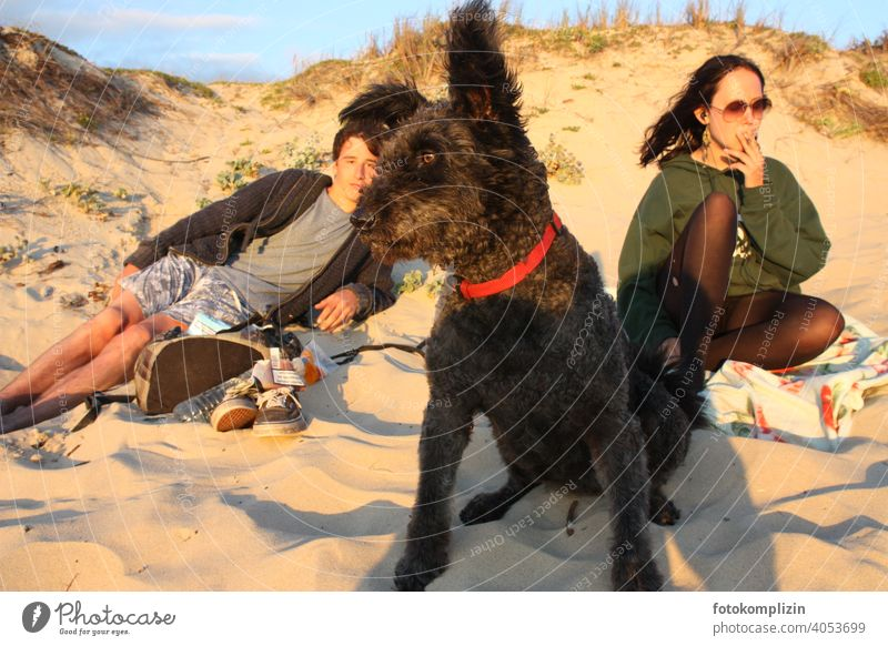 two teenagers with dog in a sand dune Dog chill relax Friendship Feeling of togetherness look Vacation & Travel Beach Sand Lie Goof off Pet Social life holidays