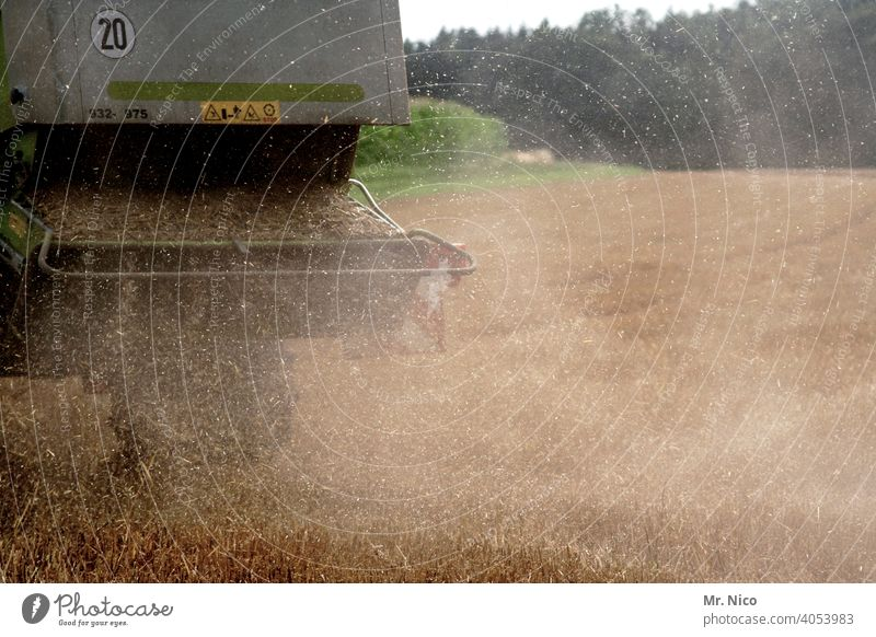 harvest time Agriculture Field Grain Summer Nature Grain field Cornfield Agricultural crop Wheat Harvest Environment Nutrition Growth Wheatfield Combine
