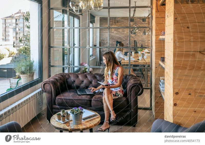 Businesswoman working with laptop sitting on the sofa businesswoman chester sofa concentrated coworking office elegant female heeled sandals young couch