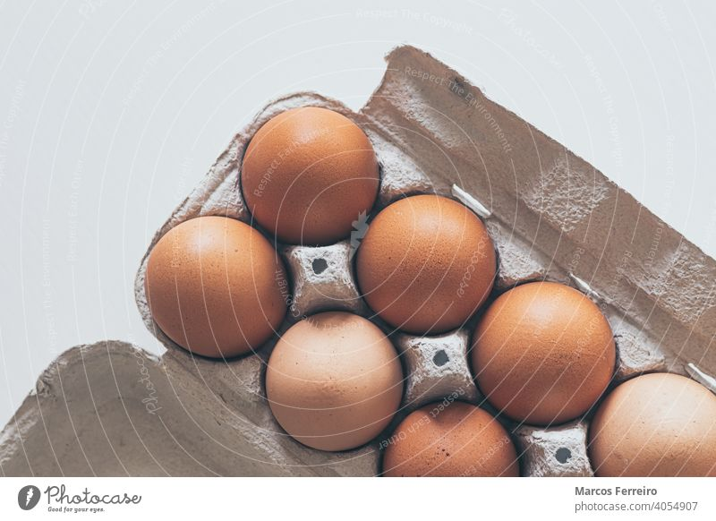 chicken eggs in a cardboard box on white background group hen salmonella storage eggs box topview cooking packaging uncooked nutrition eggshell protein product