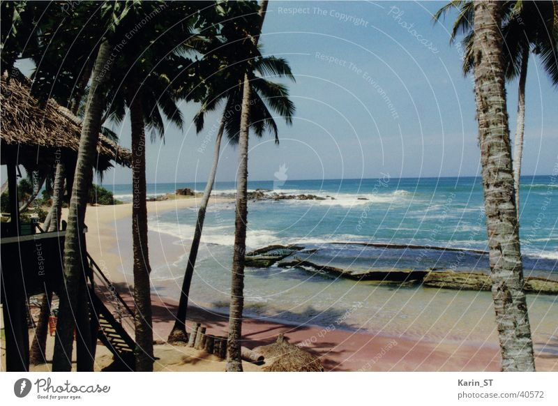 The perfect beach... Sri Lanka Beach Ocean Palm tree Vacation & Travel Sand Sun Weather Blue