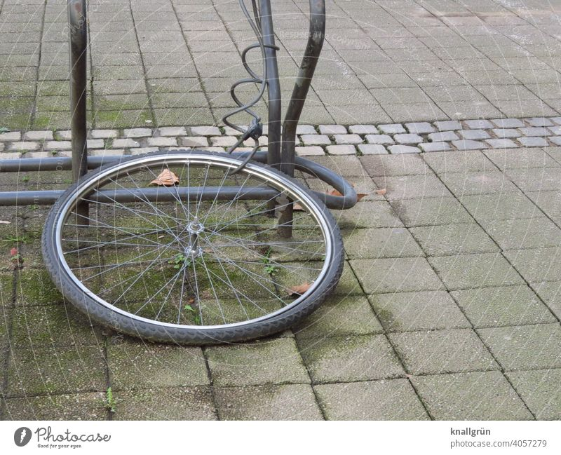 What was left of the bike... Bicycle tyre Bicycle rack Chained up bicycle lock Exterior shot Deserted Day Wheel Metal Tire Means of transport Spokes