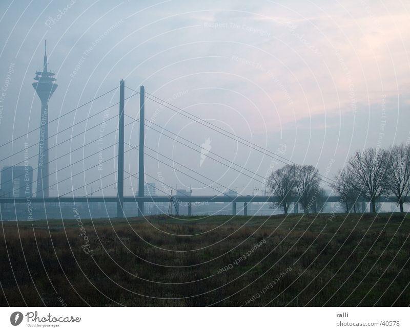 Fog Rhine