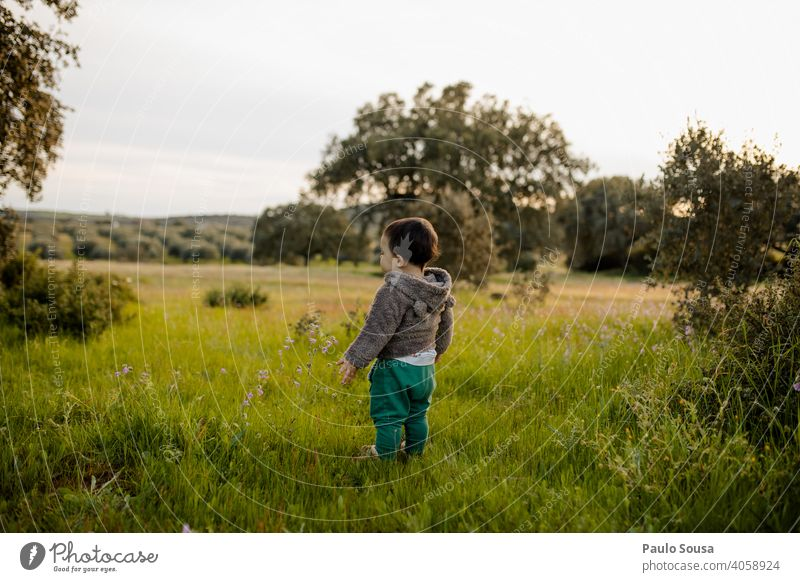 Rear view child standing in the fields Child childhood Stand Caucasian 1 - 3 years Spring Spring fever Meadow Multicoloured Lifestyle Human being Authentic