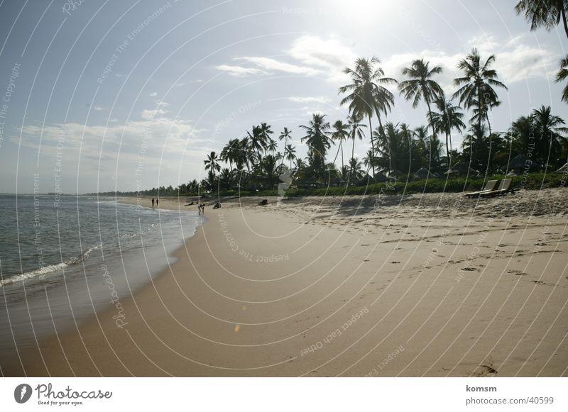 Water Sky Sun Ocean Green Blue Beach Clouds Warmth Sand Waves Physics Palm tree Brazil Surf