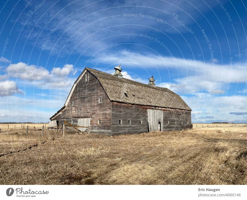 Old abandoned livestock barn in the rural countryside of South Dakota on a vacant farm Farm Barn Rural Rural Scene Landscape Abandoned abandoned place