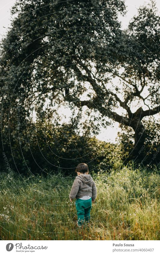 Rear view child on flower meadow Child 1 - 3 years Caucasian explore Boy (child) Nature Natural Authentic Meadow Exterior shot Human being Day Toddler Playing