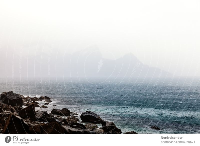 Rain and fog over the sea in Lofoten Lofotes Ocean coast Water vacation Waves Fog Wind Gale Rock mountains rocky coast ocean North Atlantic Mountain range Wild