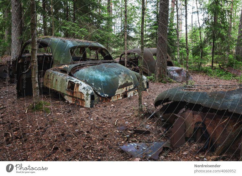 Deposited car wrecks in the forest near Båstnäs in Sweden Old Forest illicit Disposal Vintage car vintage Ancient Patina Trash Scrap metal Scrapyard waste