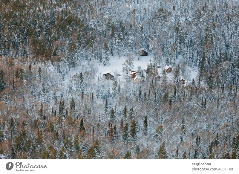 Houses in the winter forest Bird's-eye view Seasons Frost Forest Nature Environment House building House (Residential Structure) Hiking Mountain wood country