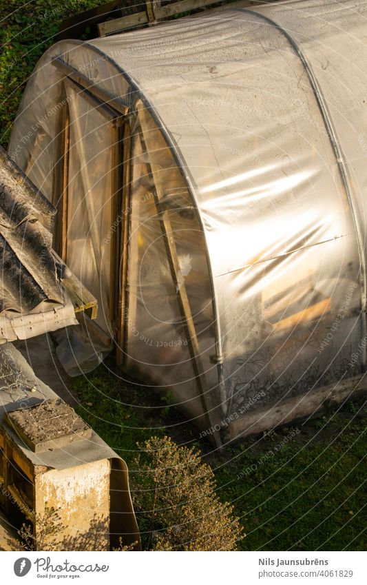 Old greenhouse entrance with bad doors. Sun gardening golden golden hour grass cultivation footpath system growing growth fresh organic field healthy clear