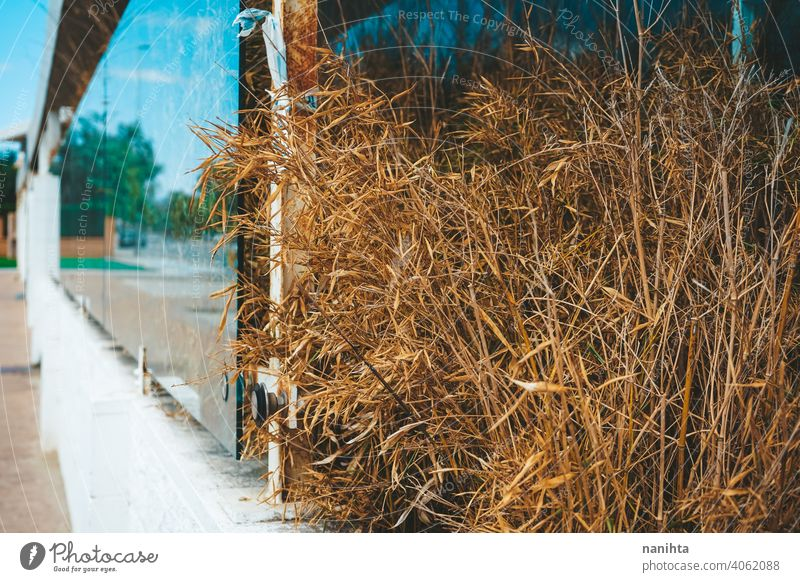 Abandoned and empty storefront in an urban street showcase shopwindow shopfront abandoned close close up clean reflection glass on sale style wall arquitecture