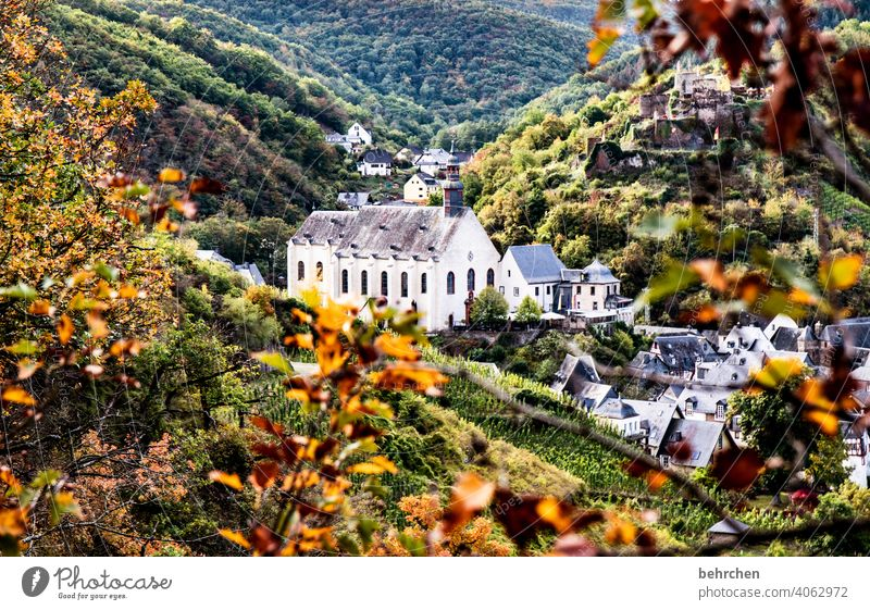fairy tale mosel Tourist Attraction Church Ruin Castle Monastery Colour photo Exterior shot Landscape Nature Hiking Deserted Environment Forest