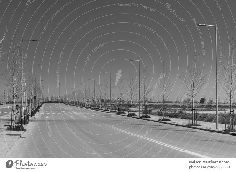 Grayscale shot of an empty street with light poles and bare trees minimal black and white light posts covid19 sad sky spring nostalgic travel tourism traveler