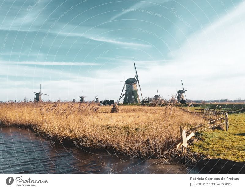 Windmills in a field windmills the netherlands kinderdjik heritage unesco heritage moinhos de vento holland holanda fields fall europe old buildings