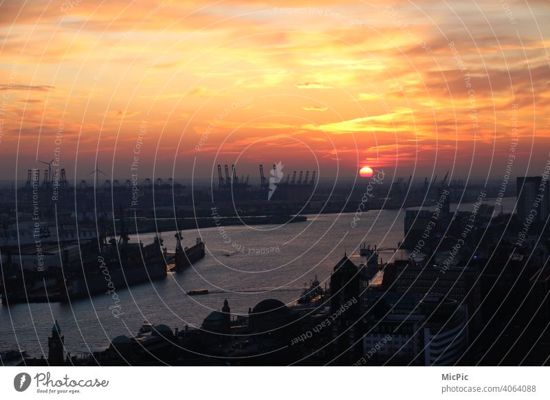 Hamburg harbour in the light of the sunset Port of Hamburg Skyline Harbour Sunset Exterior shot Port City Colour photo Town Elbe Navigation River Water