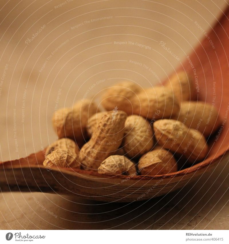 A peanut, please. Food Peanut Brown Bowl Sheath Beige Wood Nature Natural Crowd of people Many Nibbles Snack Colour photo Interior shot Artificial light Blur