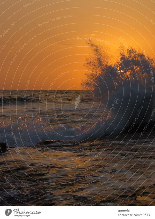 Nature Water Sun Ocean Beach Moody Power Waves Coast Large Force Speed Might Romance Infinity Longing