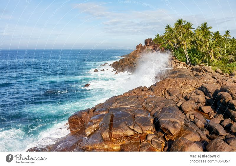 Beautiful scenery of Sri Lanka scenic West coast. beautiful landscape rock sea palm water summer sunny nature ocean weather seascape horizon sky travel holidays