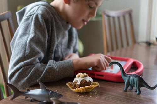 Boy with Autism communicating with ipad while eating a homemade gluten free muffin; plastic animal toys nearby special needs autism communicate communication