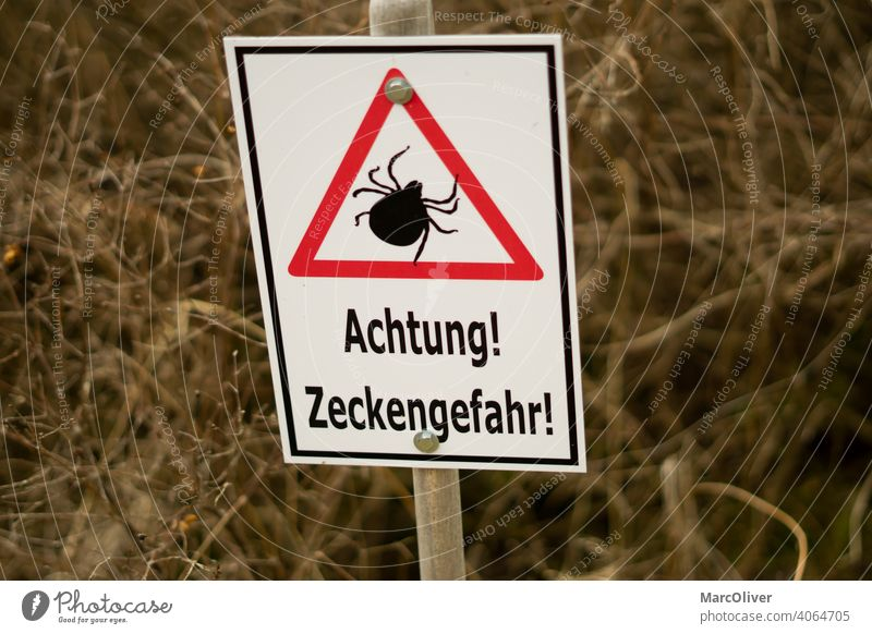 Attention tick danger - Tick sign - Caution ticks tick warning sign ticks shield attention danger of ticks caution ticks attention ticks tick danger sign