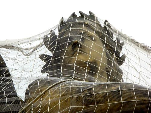 captive Net Statue Sculpture Head Woman`s head Goddess close-knit Protection Union guard sb./sth. Safety Monument Stone Historic Face Art Culture Exterior shot