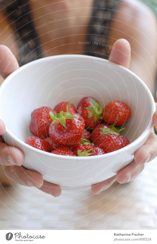 Have some... fruit..... Food Fruit Strawberry Nutrition Bowl Brown Green Pink Red Black White To enjoy Offer Fruity Juicy Proffer Refreshment Hand Summer