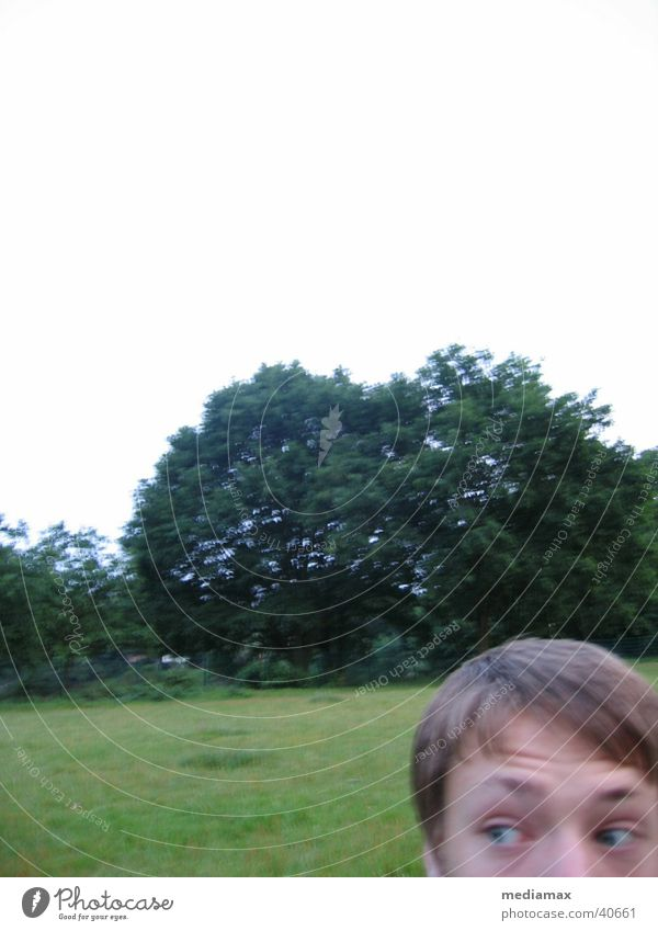 Fear in the park Amazed Blur Meadow Tree Human being Search Marvel Eyes Partially visible Boy (child)