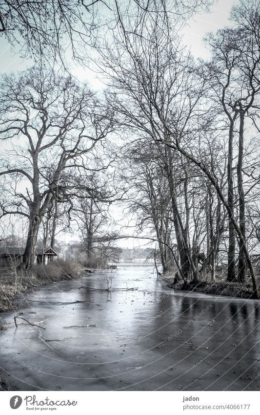 house on the lake. River River bank House (Residential Structure) Boathouse boat Ice Winter trees Water Frost Cold Deserted Nature Landscape Tree Reflection
