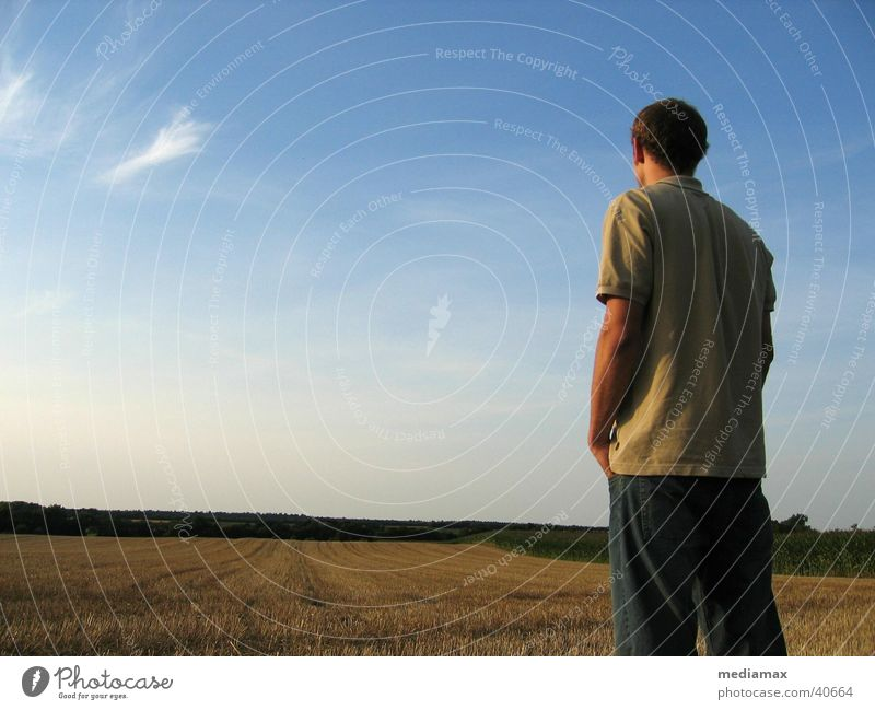 Looking ahead Rear view Man Field Dusk Hope Future Expectation Vantage point Relaxation Nature Sky objective Freedom