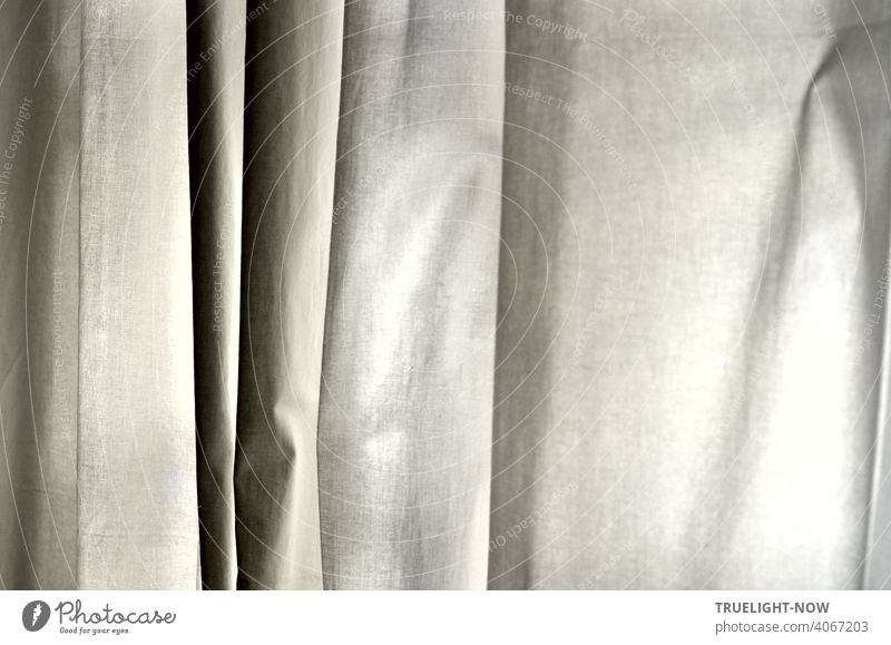 A curtain of plain white cotton hangs in vertical folds, revealing a variety of finely graded shades of grey Drape Cloth Cotton plant White Shades of grey Black