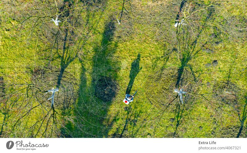 Aerial view on gardener who sprays fruit trees in orchard using atomizer Above Aerosol Agricultural Agriculture Atomizer Biochemical Biohazard Botanic Botanical