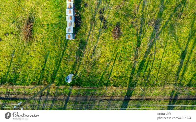 Above view on gardener in protective overall, sprinkles fruit trees with long sprayer, apiary is in the orchard Aerial Aerosol Agricultural Agriculture Apiary