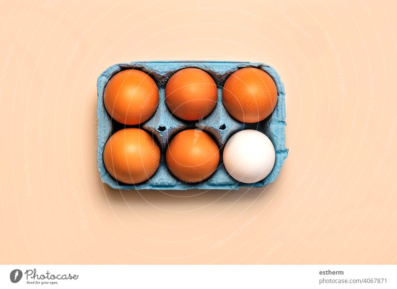 Top view of chicken eggs in an open blue cardboard box easter eggs fresh egg yolk eat container basket farming storage farmyard animal egg freshness agriculture