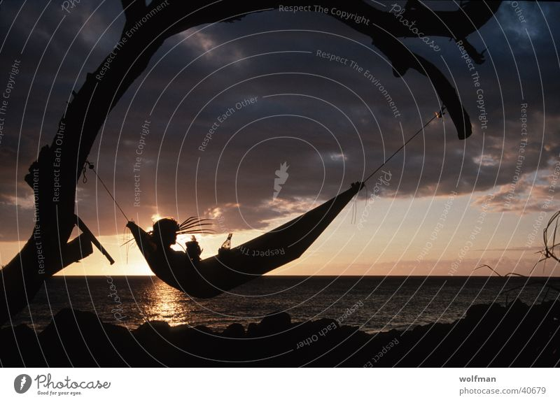 Relax with Bacardi Sunset Hammock Tree Beach Loneliness Think South America bacardi Orange ponder wolfman wk@weshotu.com