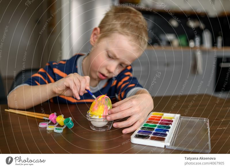 Boy coloring Easter egg easter child decoration dye painting home boy brush easter egg holiday spring indoor tradition fun childhood craft table art caucasian